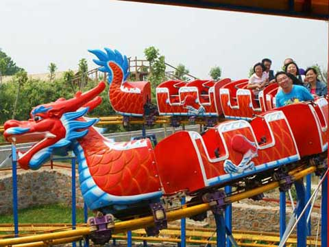 Slide dragon roller coaster ride for sale for backyard use