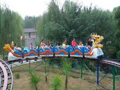Dragon theme slide roller coaster for sale