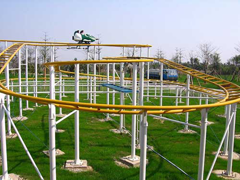 Wild Mouse Family Roller Coaster