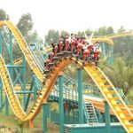 Flying Roller Coaster for Sale