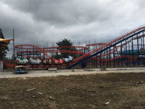 Kiddie Wild Mouse Roller Coaster