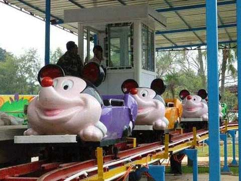 Cute Kiddie Wild Mouse Roller Coaster Rides