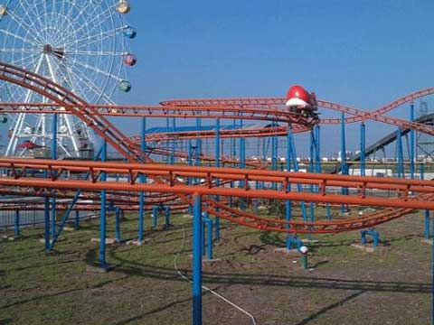 New Mini Roller Coaster- Wild Mouse Roller Coaster for Kids